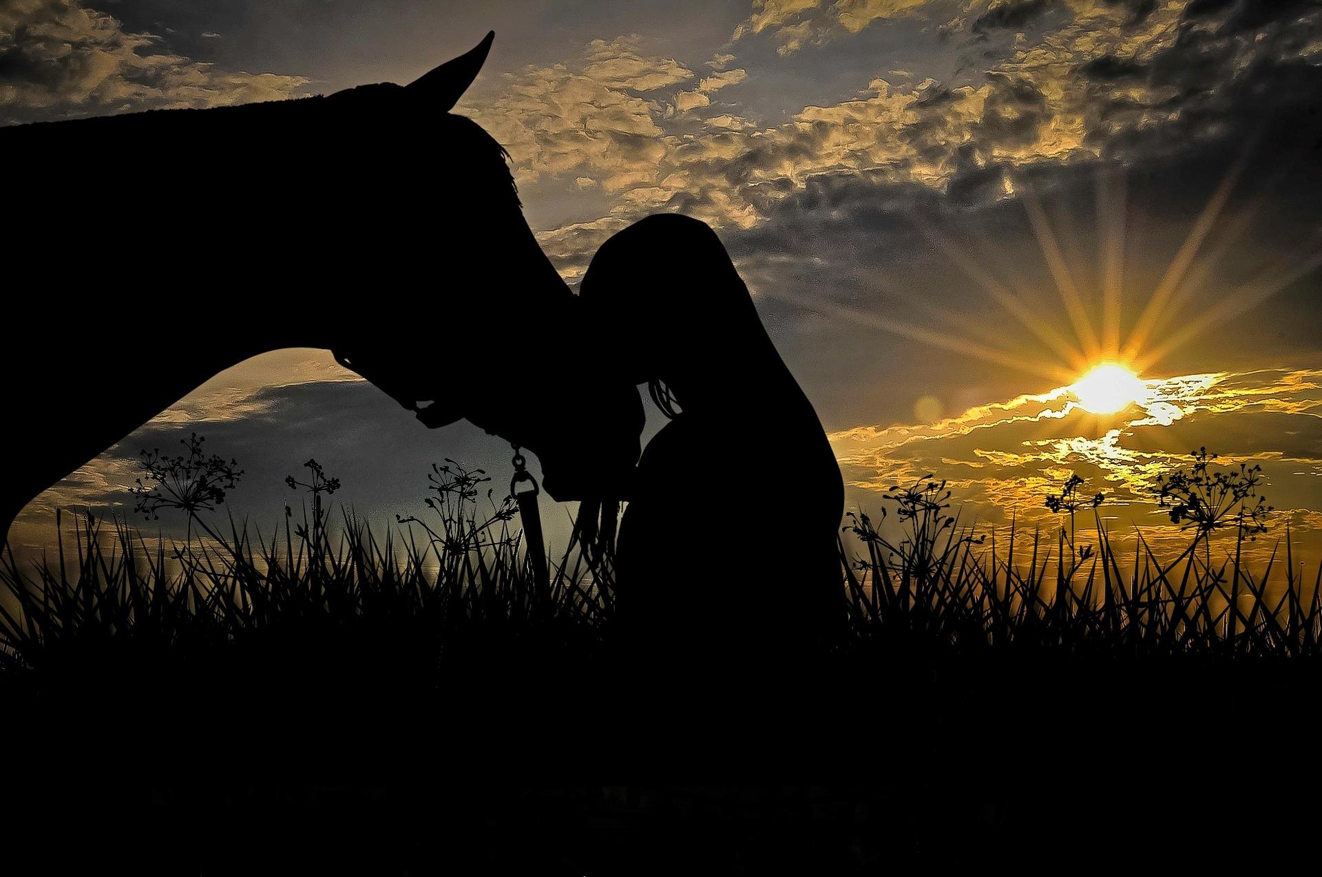 Gabriele Rass Hubinek Psychotherapie Horse Equitation