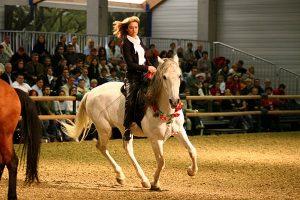 Gaby Rass-Hubinek Horsewomanship