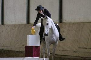 Horsewomanship Gabriele Rass Hubinek